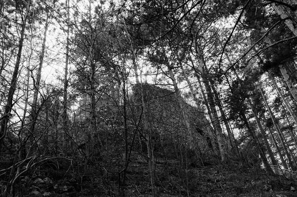 砦チェンチ1.JPG